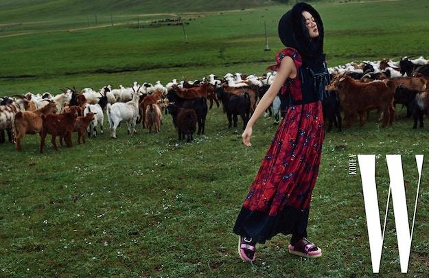 Солонгосын W сэтгүүл аравдугаар сарын дугаарынхаа зураг авалтыг Монгол улсад хийлээ (фото 4)