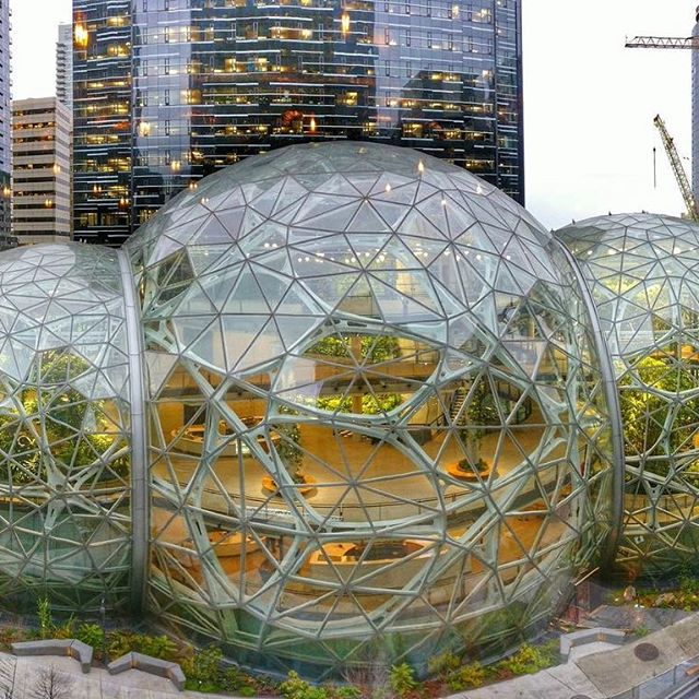 Amazon Сиэтл хотын төвд ширэнгэн ой  ургууллаа . Amazon's mini rainforest work space spheres are opening in Seattle.  #amazon #thespheres #seattle
