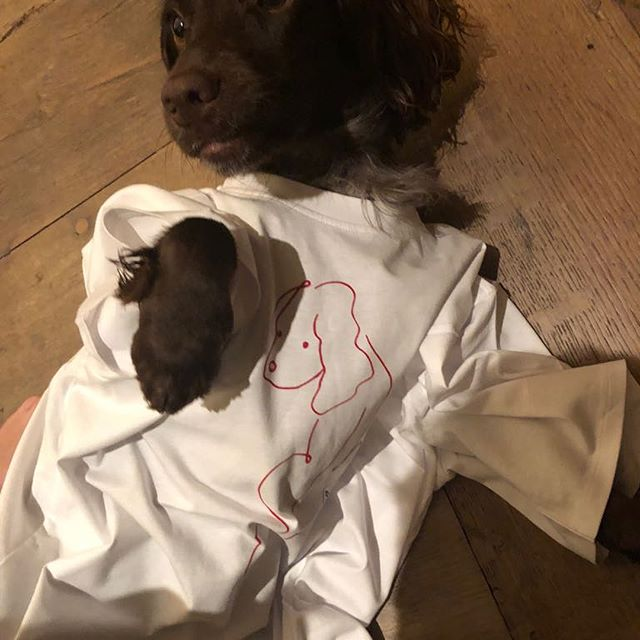 @olivebeckham23 loves her new t-shirt! x VB    #dogsofinstagram #YearoftheDog
