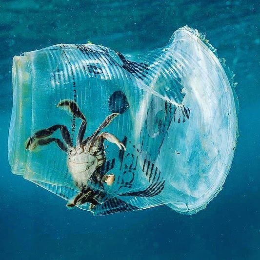 More EXCITING news on PLASTIC BAN: 560 lawmakers from the European parliament voted overwhelmingly to ban single-use plastic items by 2021, in a bid to tackle marine litter and encourage sustainable alternatives. Additionally European Union member countries will also have to achieve a 90% collection target for plastic bottles by 2029.   According to statistics more than 80% of marine litter is plastic and only less than 30% of the 25 million tonnes of plastic generated yearly by E.U. countries is recycled.
