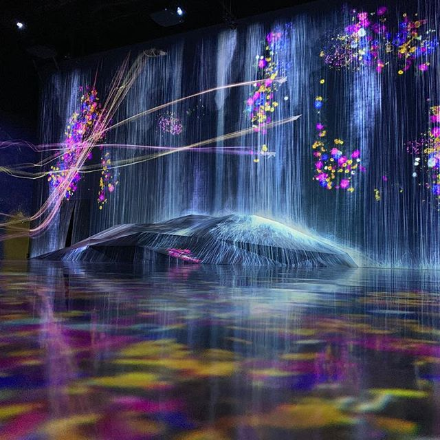 Mind Blown Thank you so much @teamlab_borderless @teamlab_news #teamlab #teamlabborderless